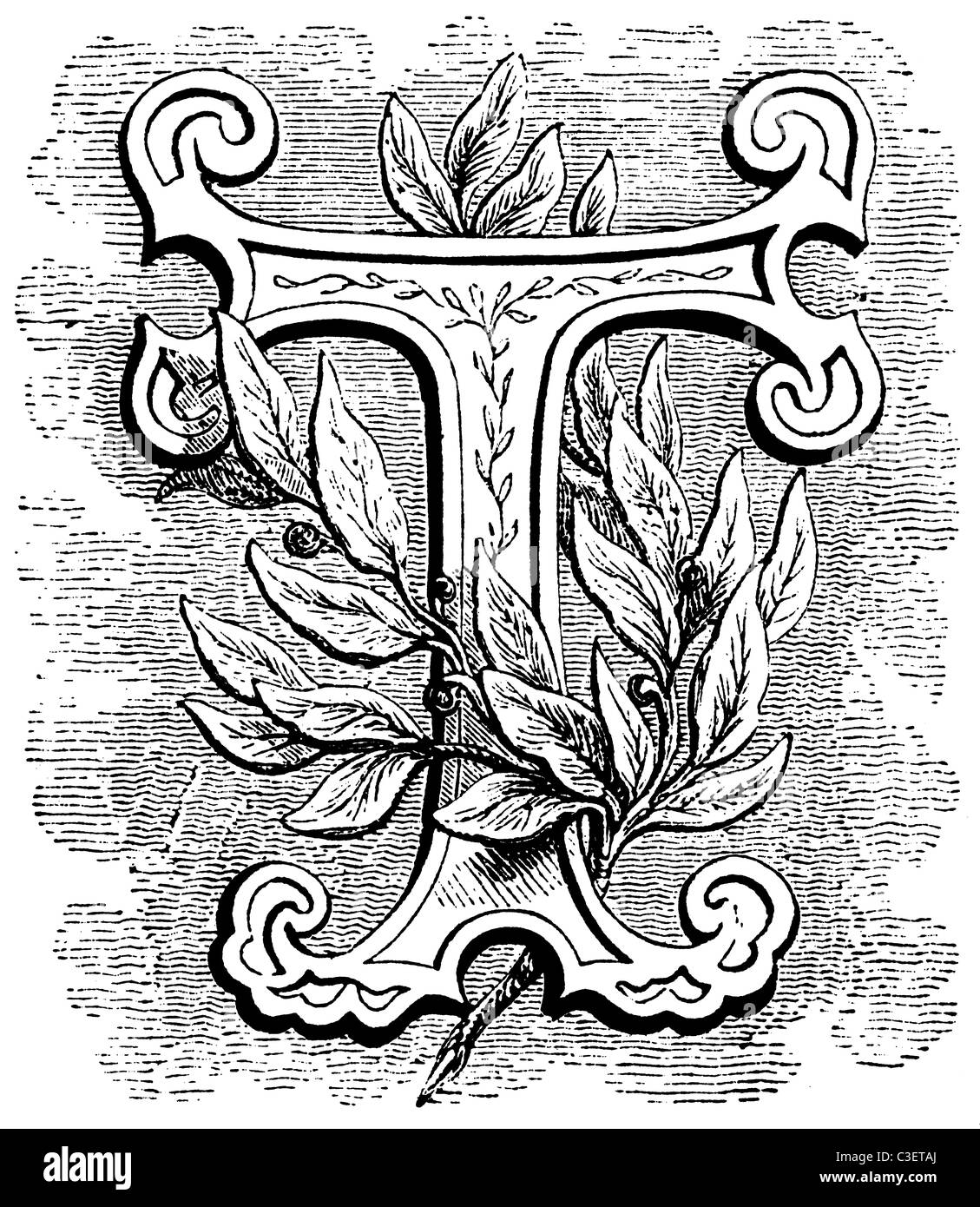 Early victorian 14 line decorative foliated initial letter t for early victorian 14 line decorative foliated initial letter t for drop capital altavistaventures Images