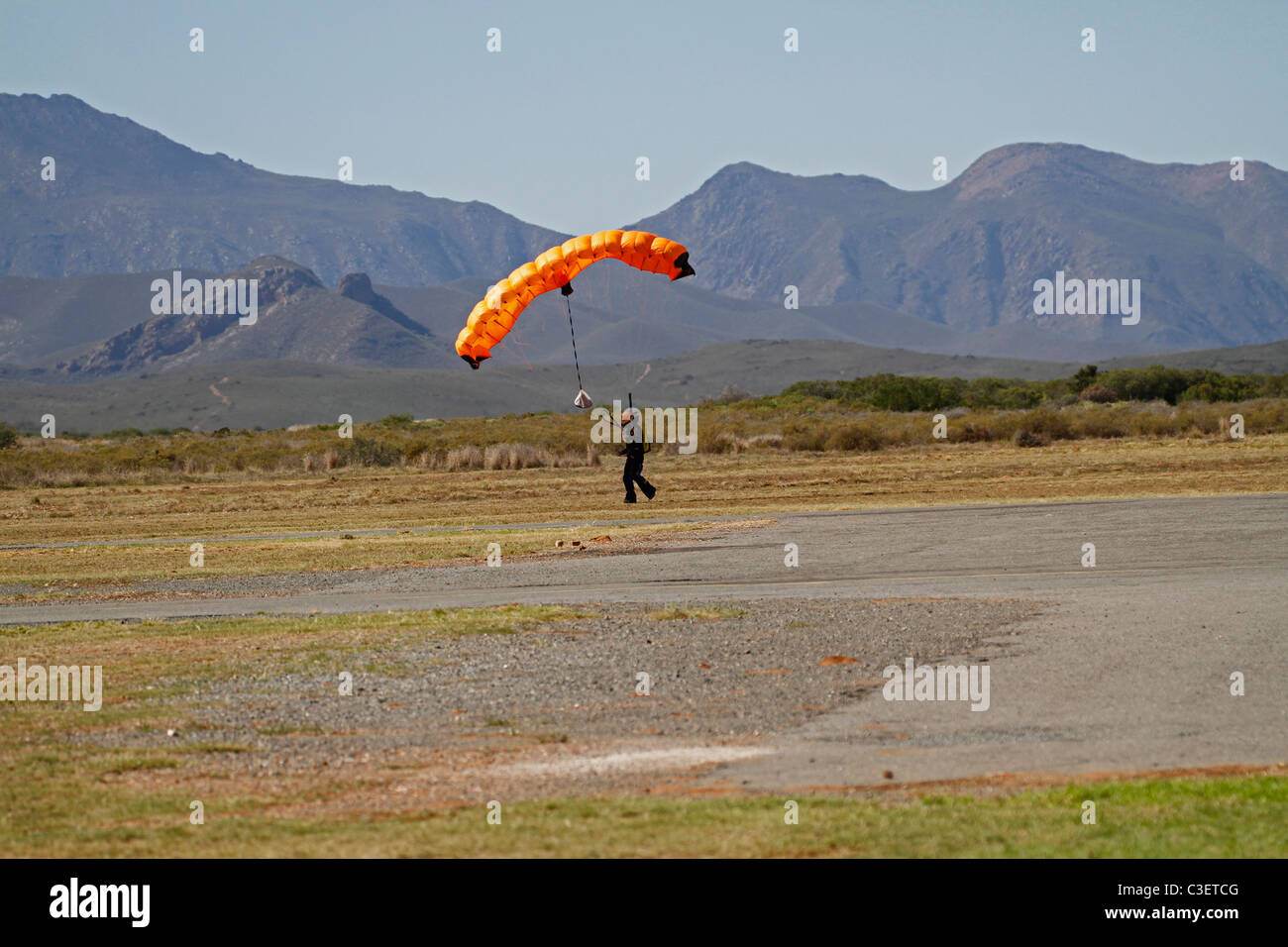 Skydiver landing at Robertson Airfield in the Western Cape after a successful jump. - Stock Image