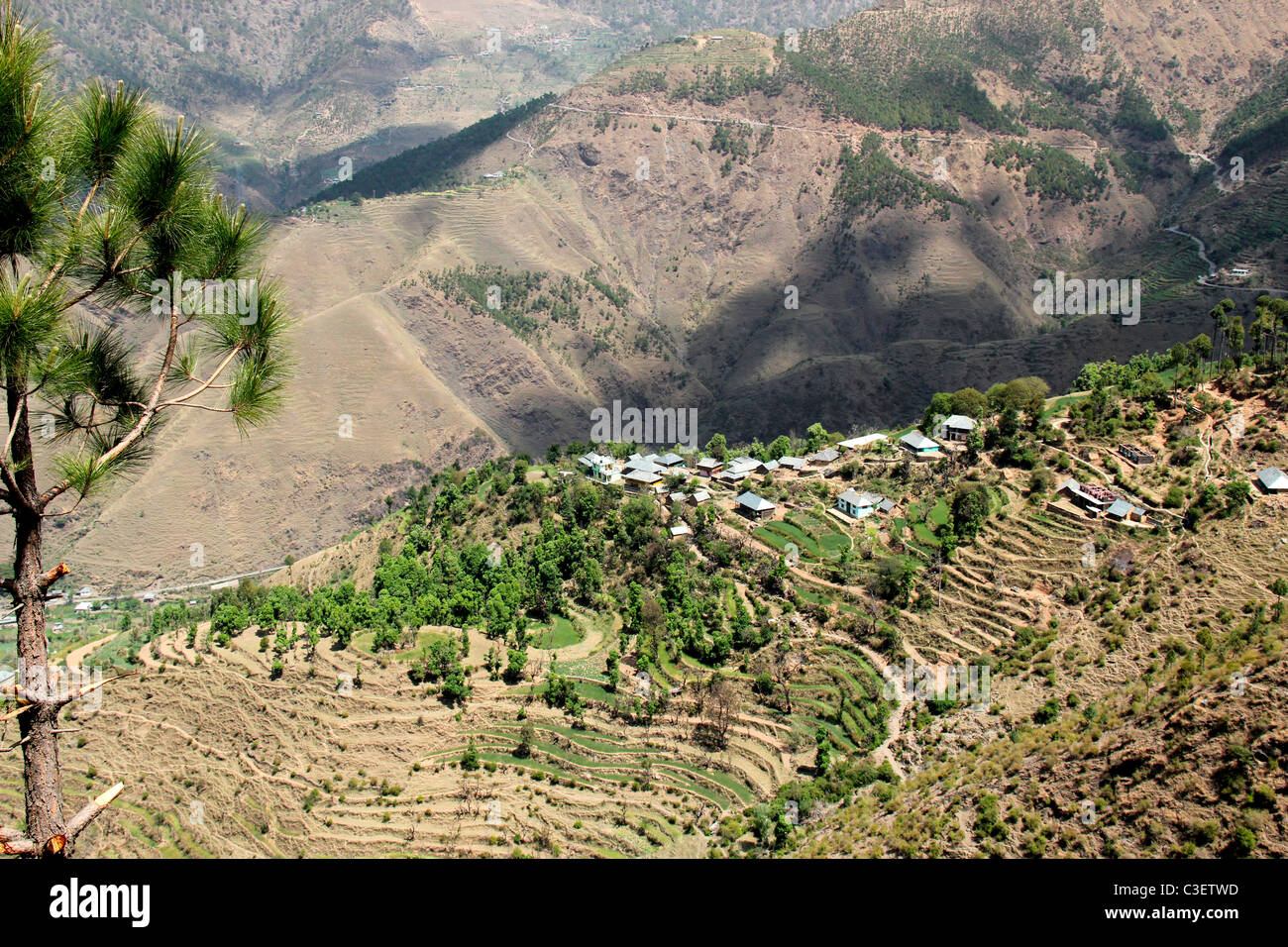 A view of stepped cultivation in Kulu Manali, Himachal Pradesh,india - Stock Image