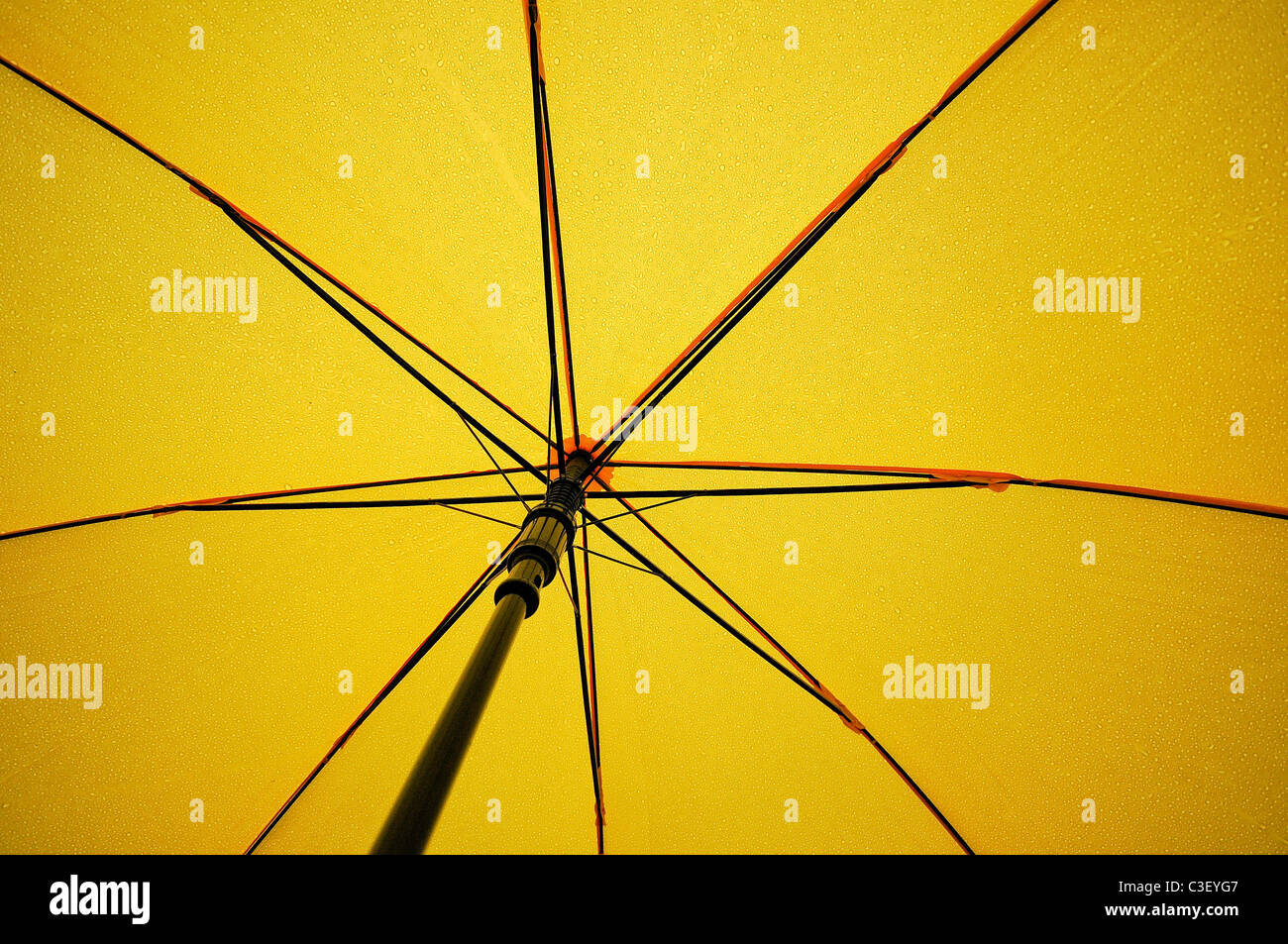 The under side of an open yellow umbrella, with rain drops seen through the material. - Stock Image