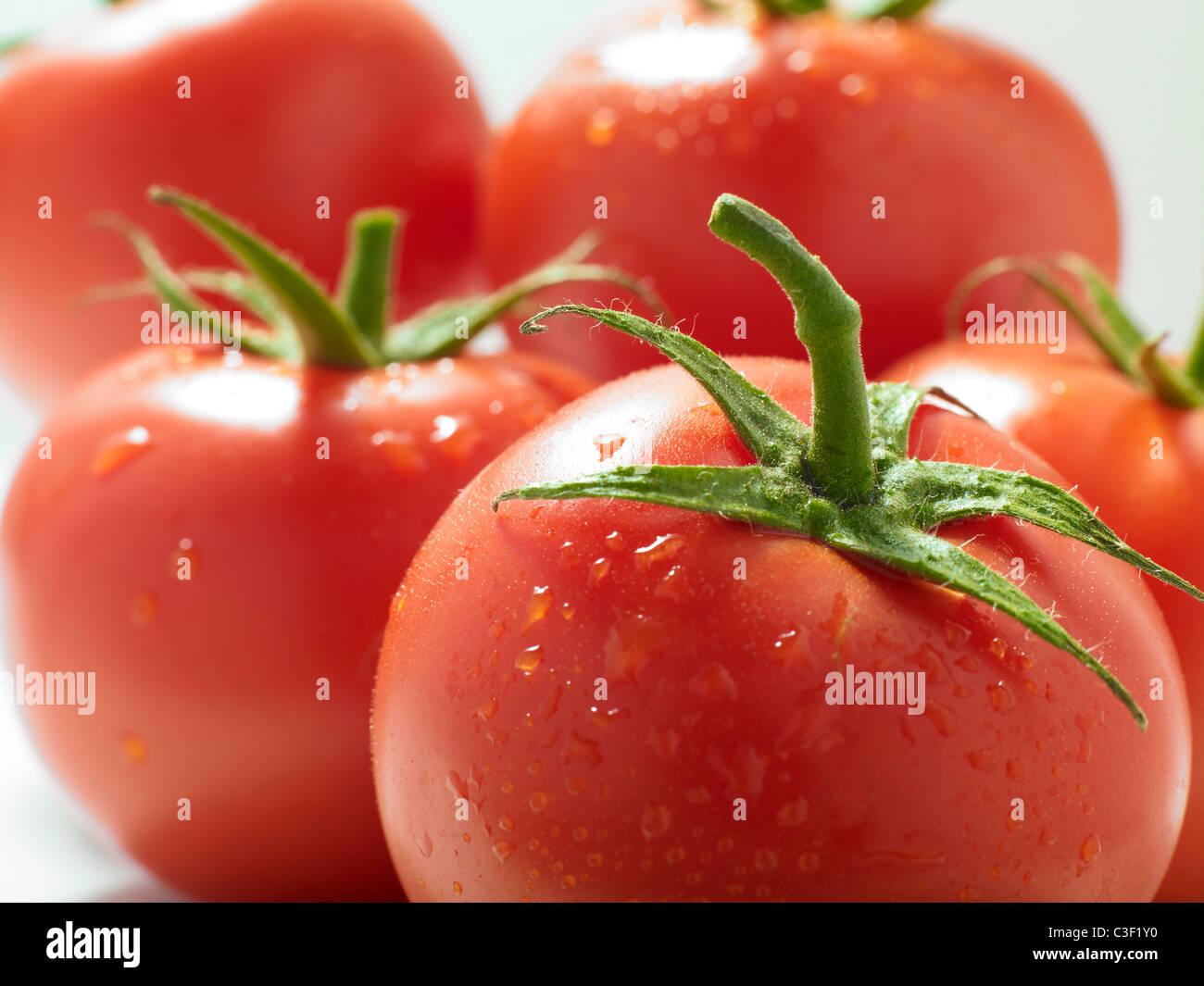 Fresh vine-ripened tomatoes - Stock Image
