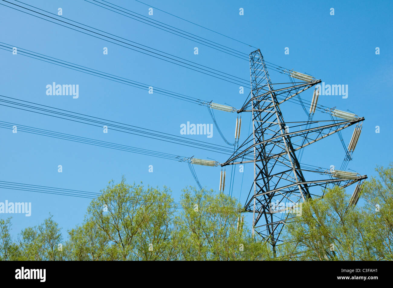 Electricity Pylon with Willow Trees below - against a blue sky. UK - Stock Image