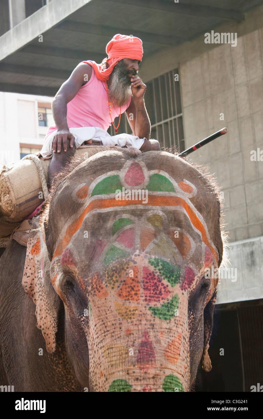 Man sitting on a elephant, Ahmedabad, Gujarat, India - Stock Image