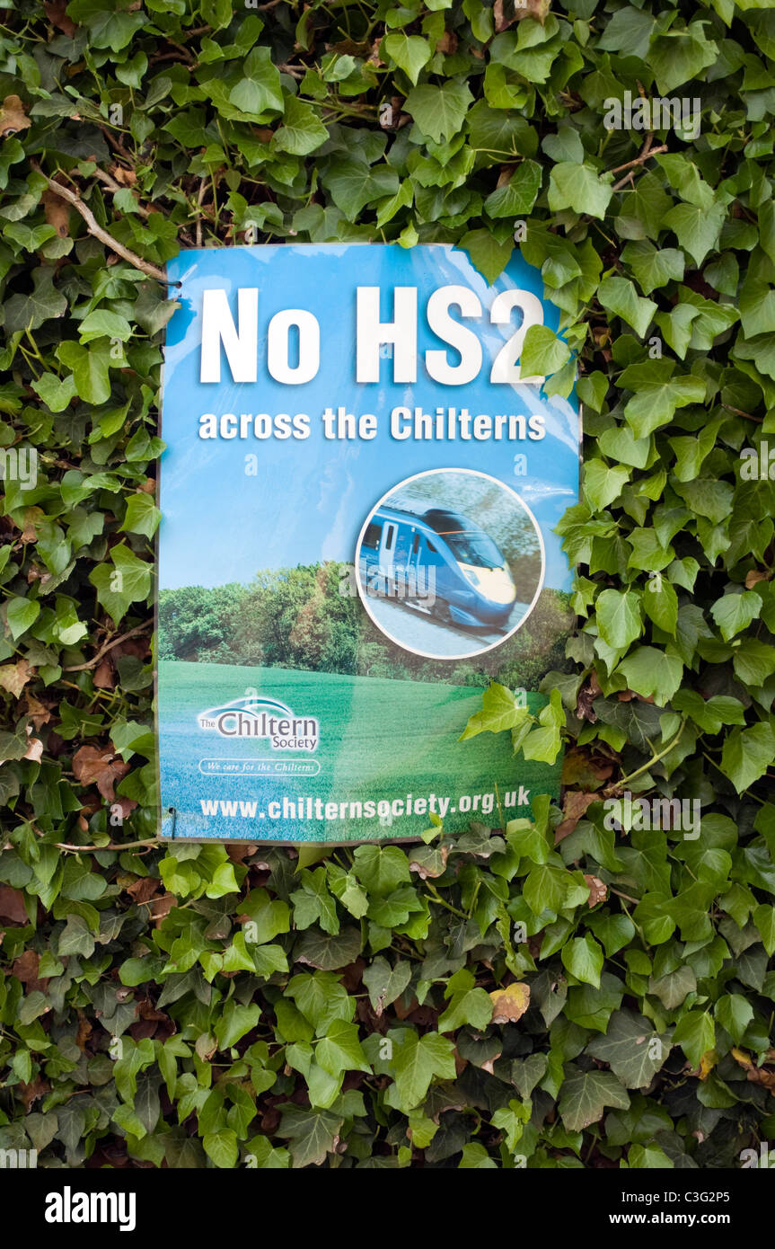 No HS2 across the Chilterns protest notice on an ivy hedge in Little Missenden Bucks UK - Stock Image