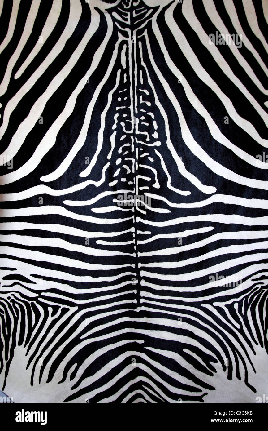 animal zebra skin black and white fur stripes leather background - Stock Image
