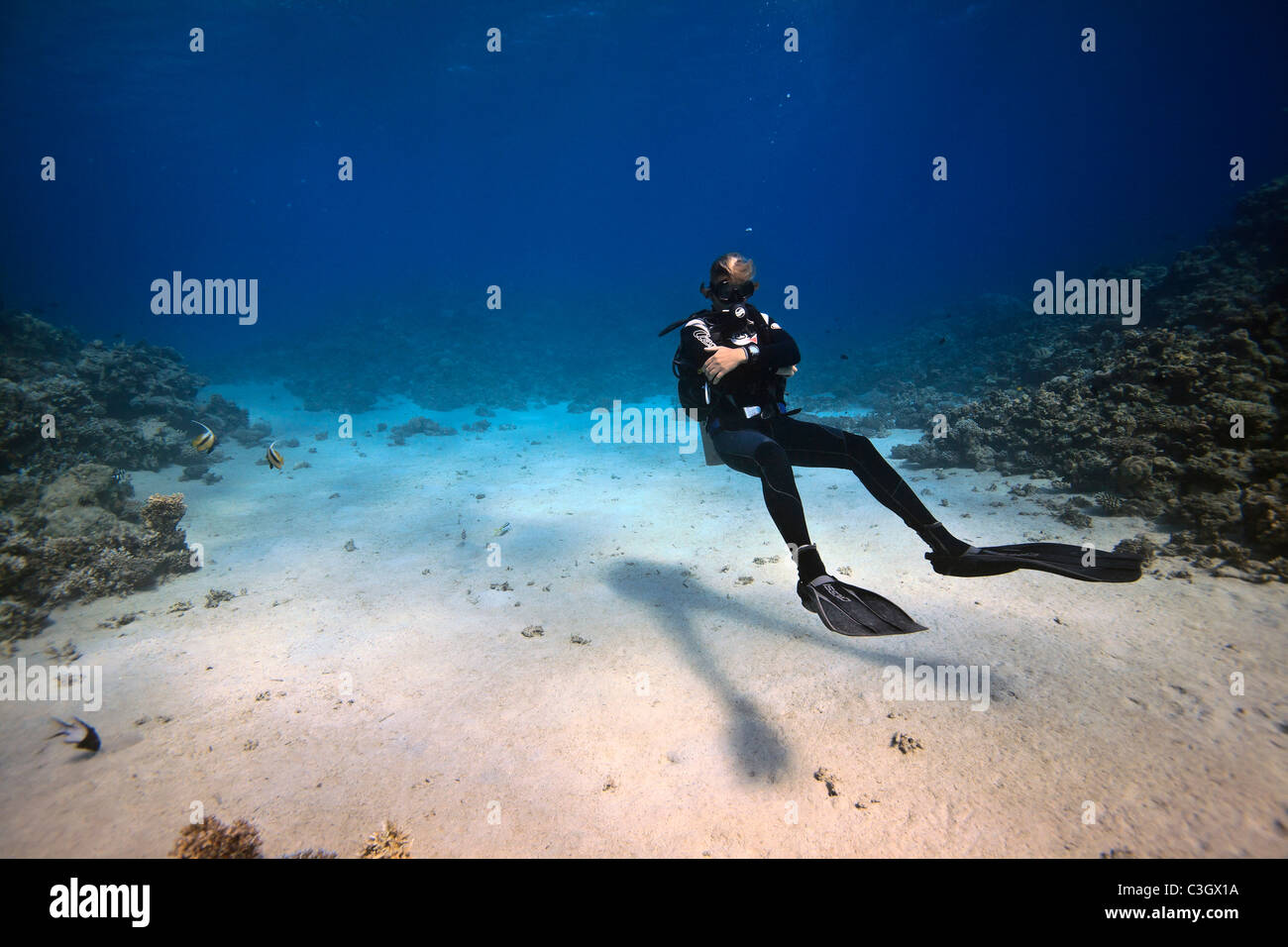 A scuba diver demonstrates impressive bouyancy while waiting for his charges to catch up during a guided dive. Red - Stock Image