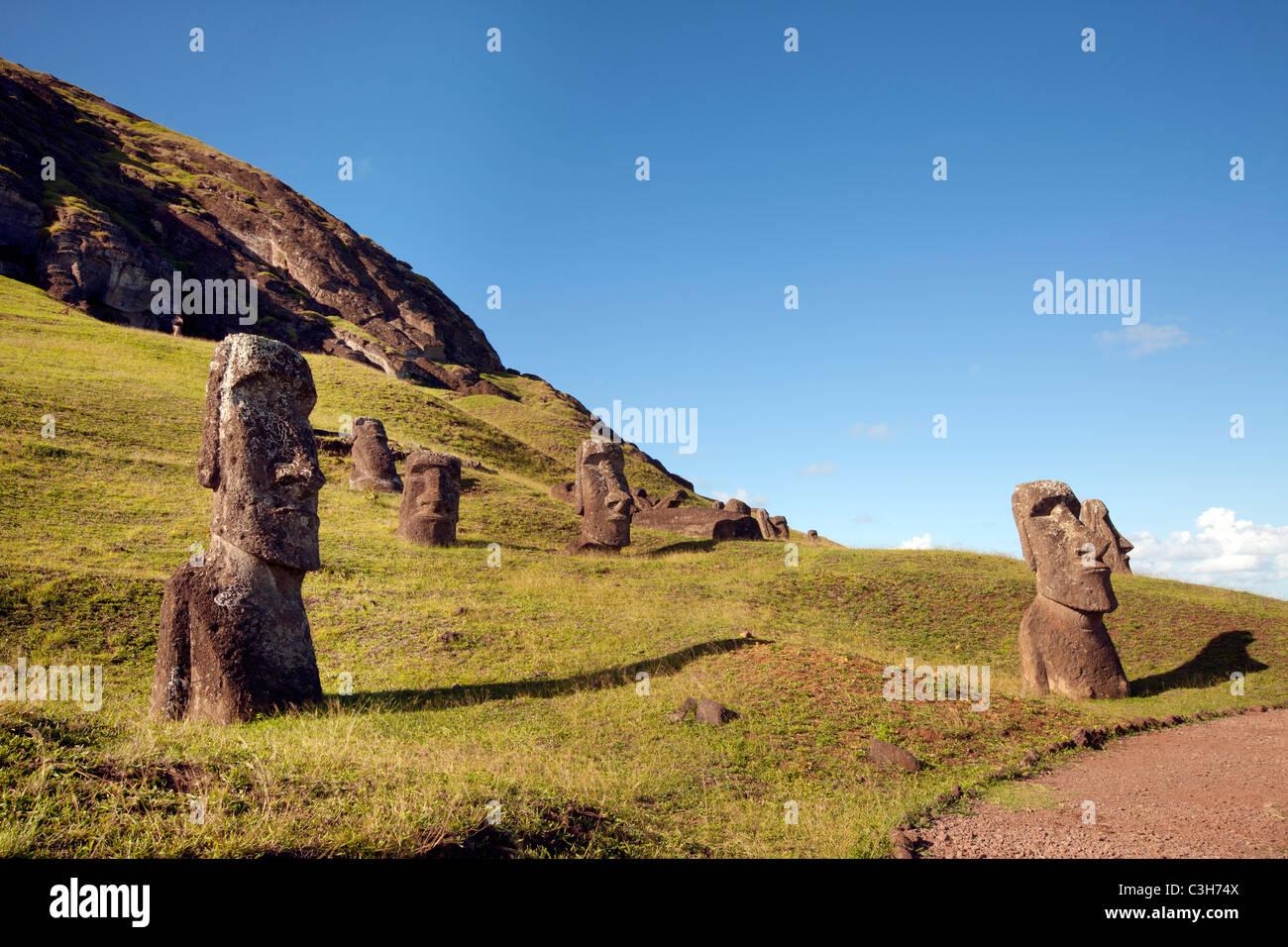 Moais on hillside at Rano Raraku, Easter Island. - Stock Image