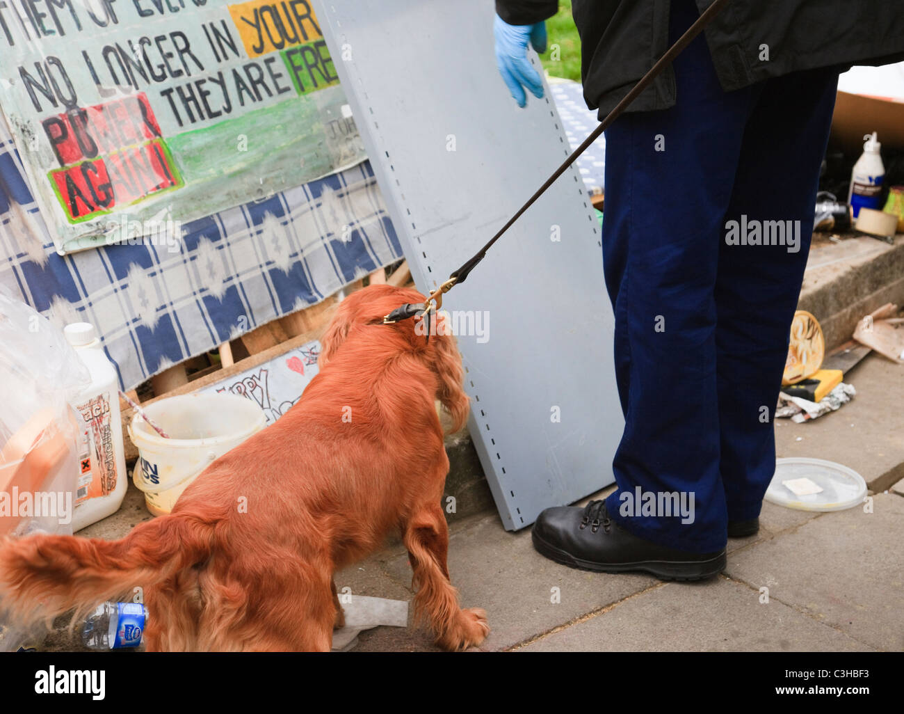 London, England, UK. Metropolitan police dog-handler with security sniffer dog checking the peace camp on Royal - Stock Image