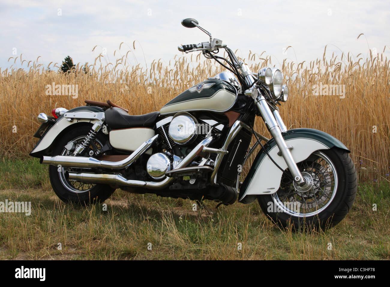 Motorrad, Kawasaki, im Kornfeld, Seitenansicht, Motorcycle, Motorbike, in cornfield, side view - Stock Image