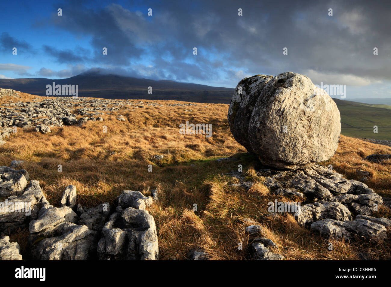 A lone glacial erratic sits atop the limestone pavement of Twistleton Scar over Ingleton in the Yorkshire Dales - Stock Image