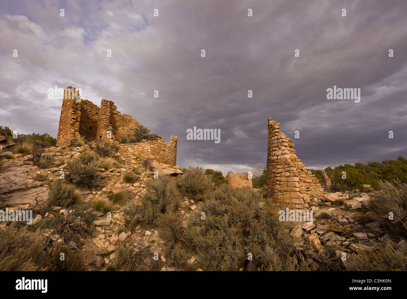 Cutthroat Castle and towers, Cutthroat Group at Hovenweep National Monument in southern Utah, USA. - Stock Image