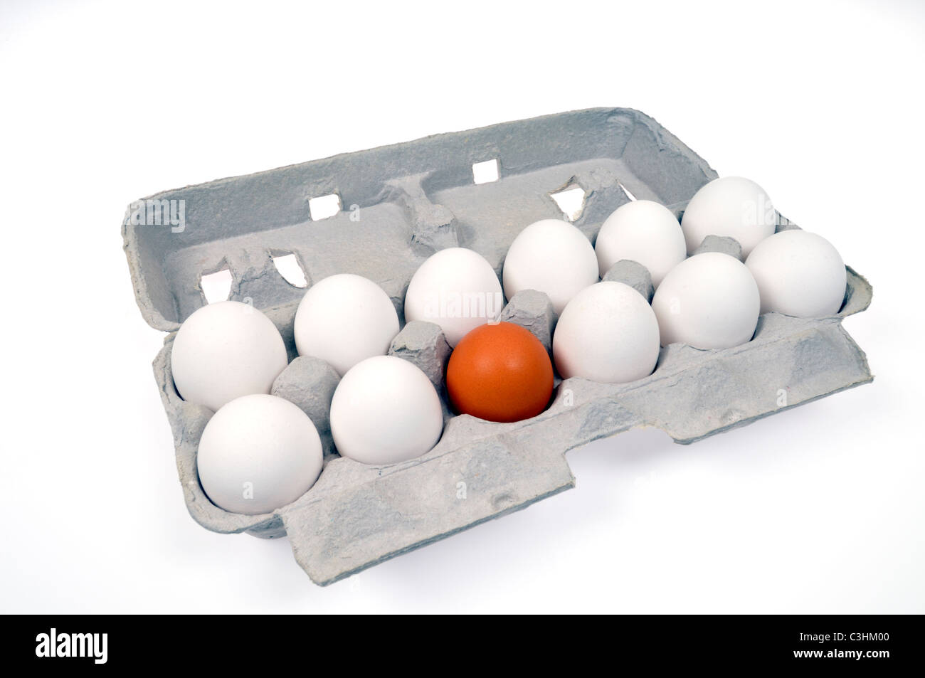 Concept of alienation and discrimination using 11 white and 1 single brown eggs in carton, white background. - Stock Image