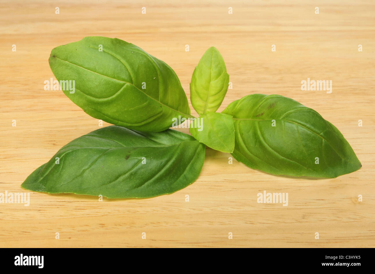 A sprig of fresh basil herb leaves on a wooden board - Stock Image