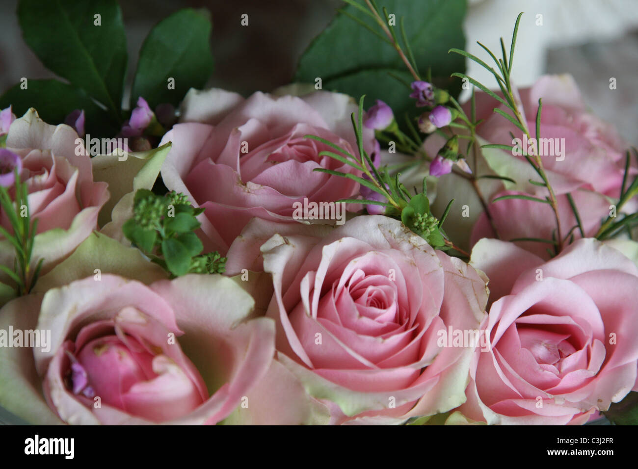 Blumenstrauss, rosa Rosen, Blumenboquet, Bouquet, pink roses Stock Photo