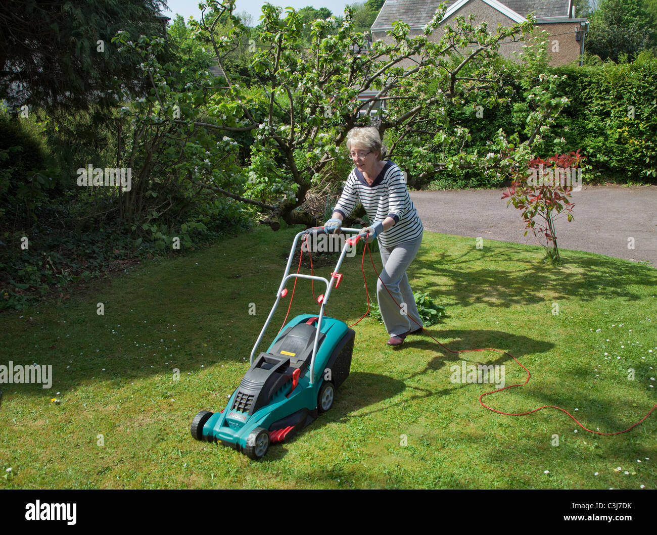 OLDER WOMAN MOWING LAWN WITH ELECTRIC MOWER UK - Stock Image
