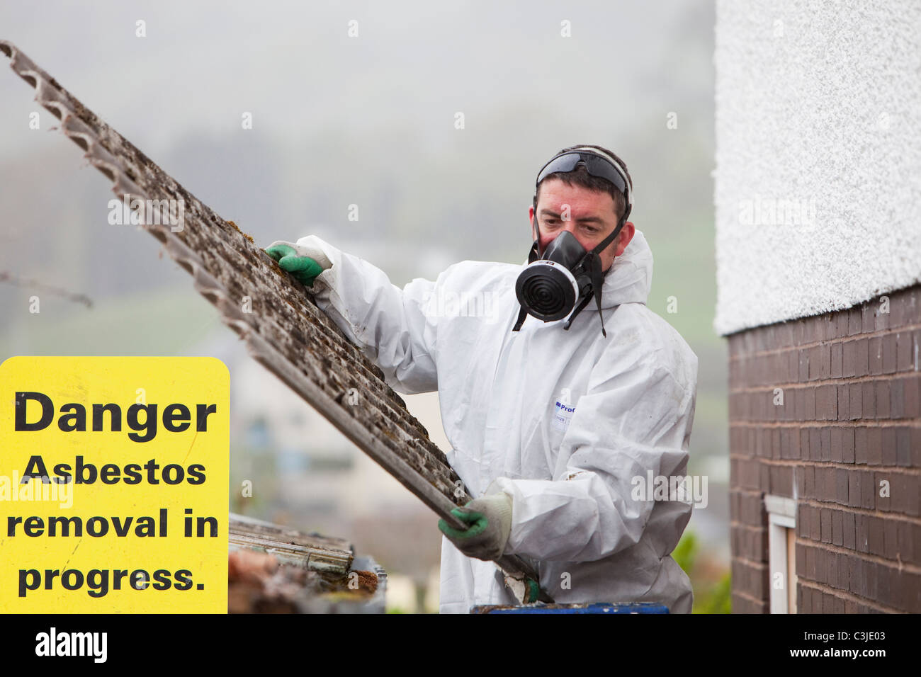 A specialist asbestos removal company removing asbestos from a shed roof of a house in Ambleside, Cumbria, UK. - Stock Image