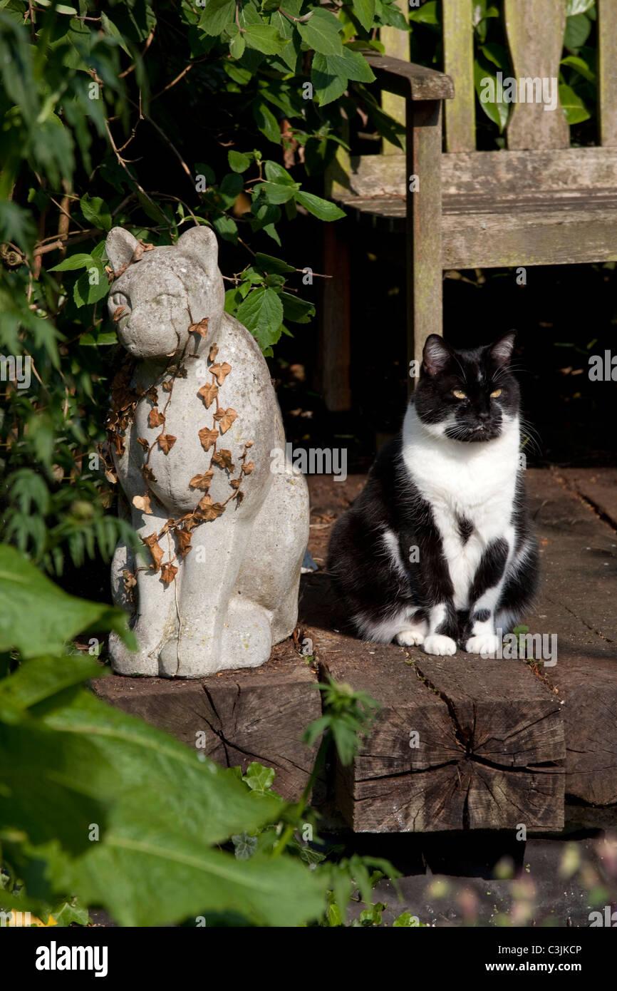 Cat in garden next to stone cat statue on railway sleepers - Stock Image