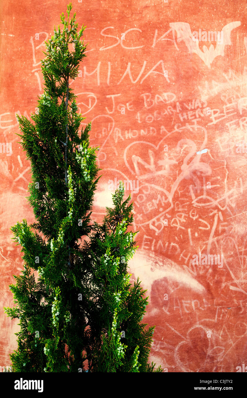Writings on a wall - Stock Image