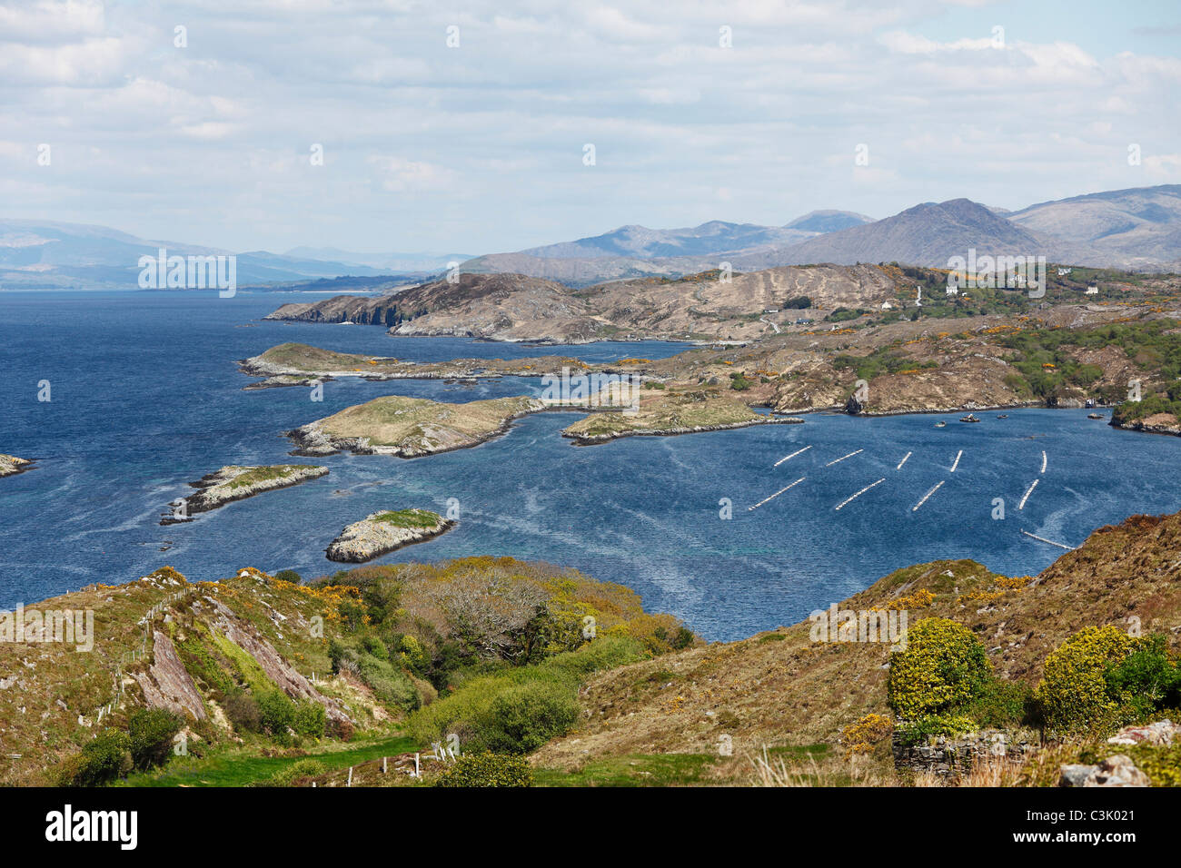 Ireland, Cork, View of beara peninsula with cleanderry harbour - Stock Image