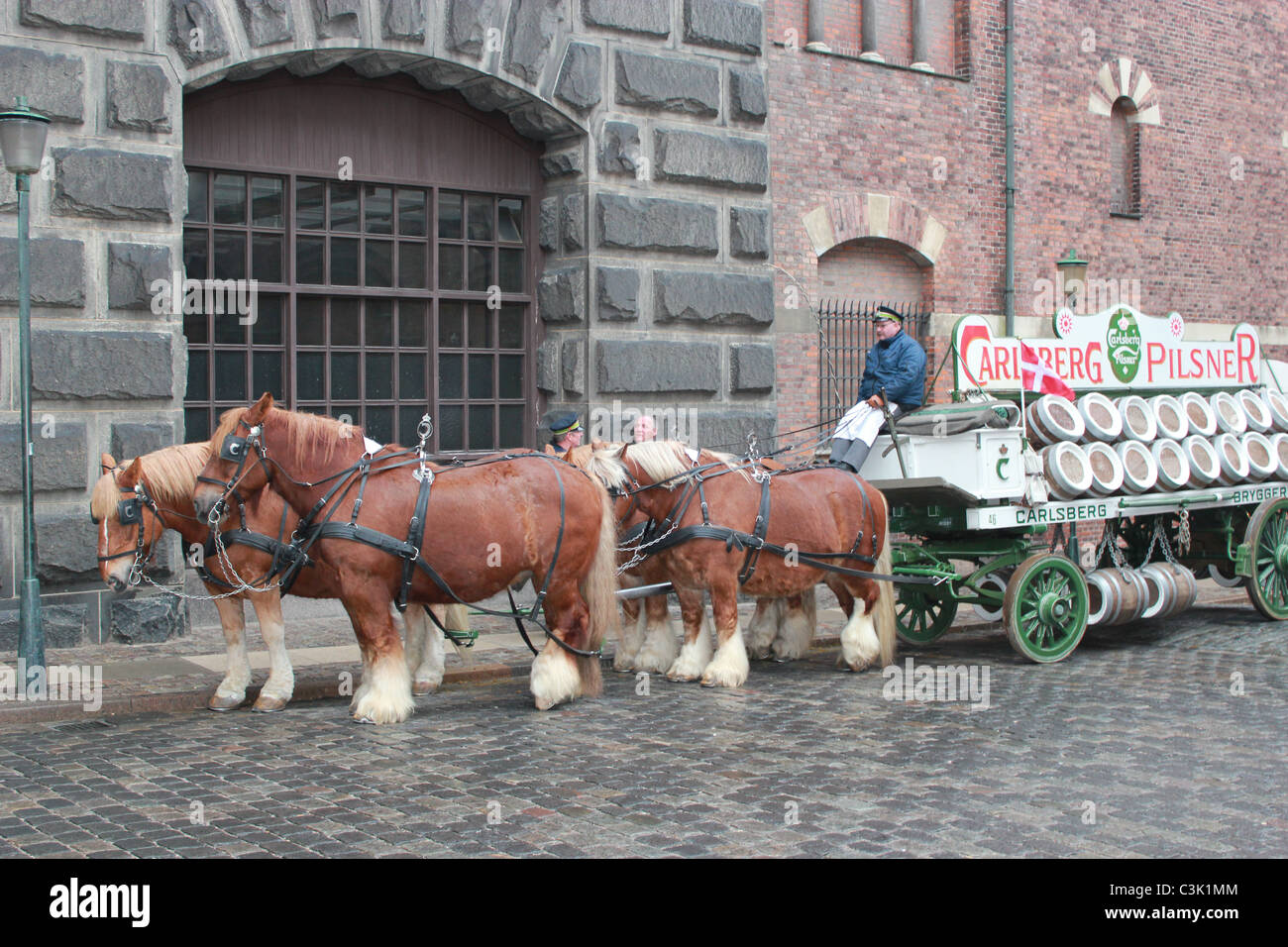 Carlsberg´s horses with a driver and load of beer - Stock Image