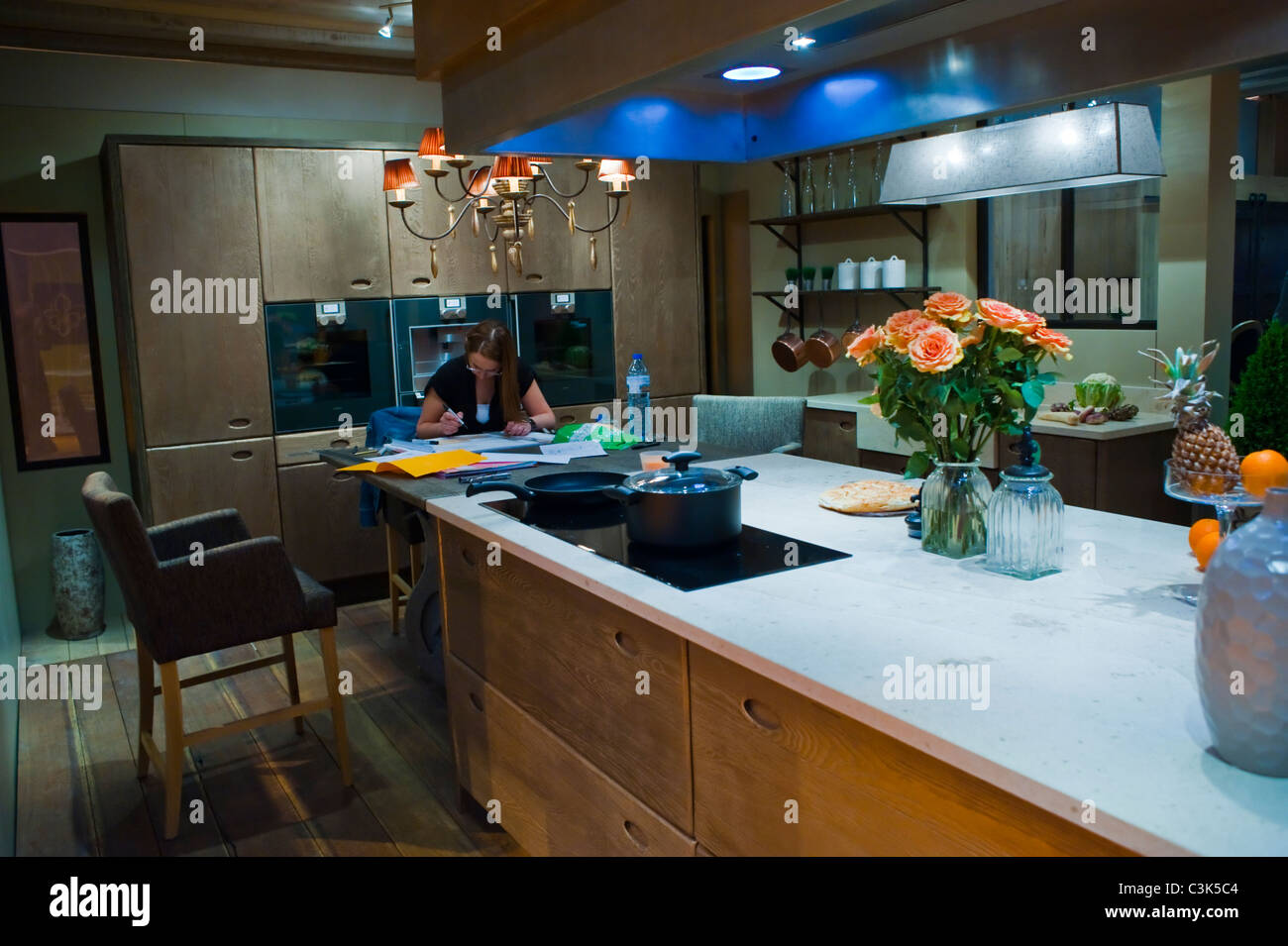 Paris, France, Modern Kitchen Design At Trade Show, U0027Foire De Parisu0027