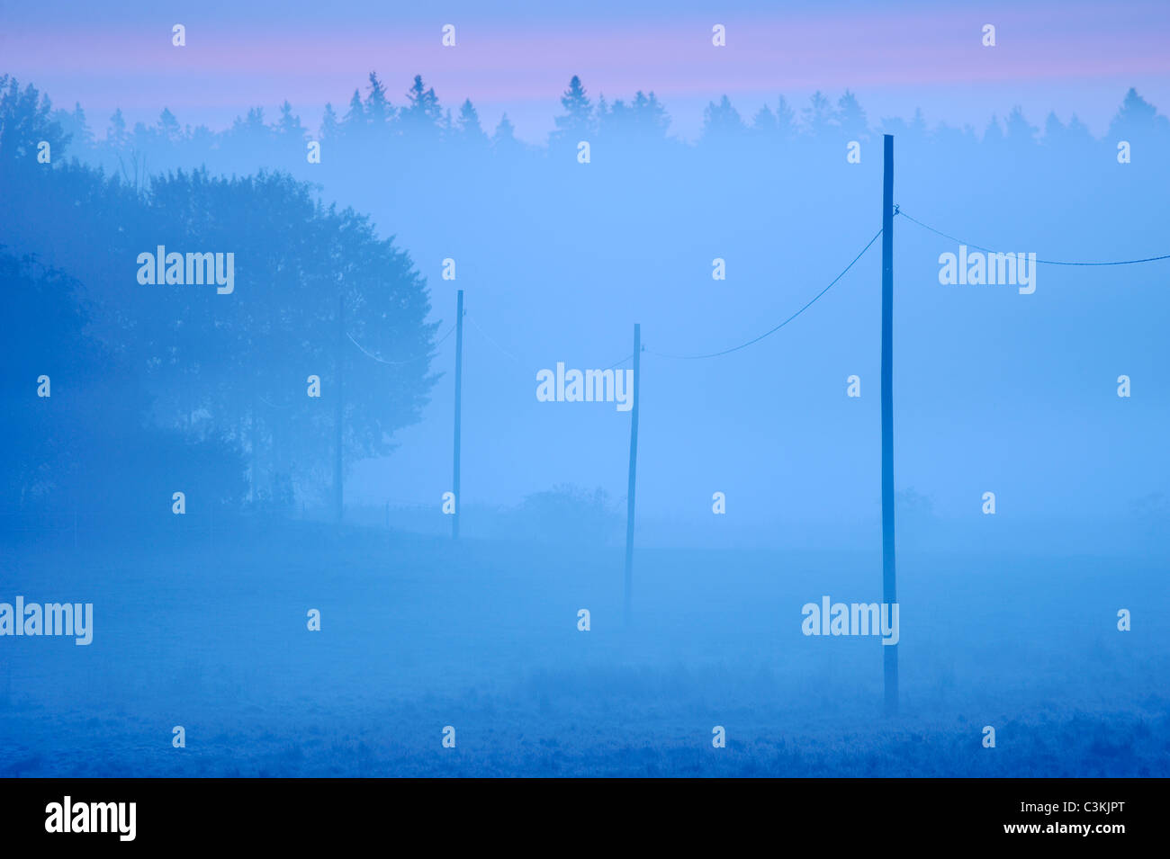 Row of electricity poles on field in morning mist - Stock Image