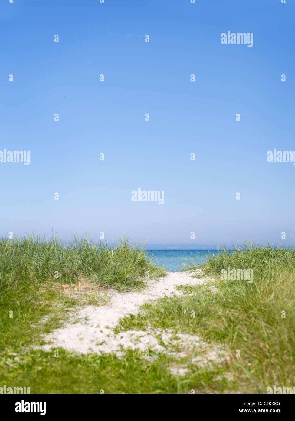 Landscape with dunes and sea - Stock Image