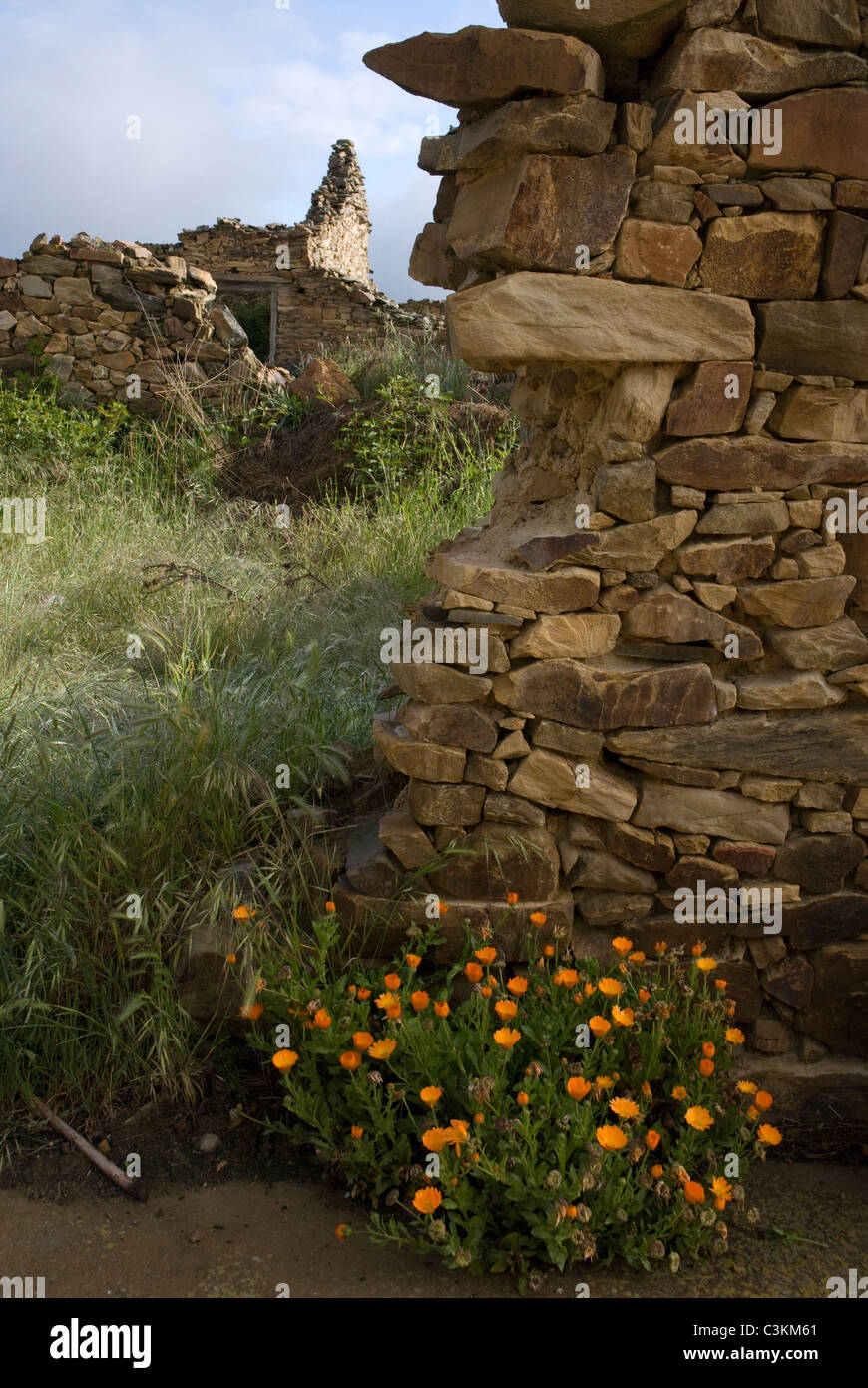Rustic dry stone wall on the pilgrimage route, Camino de Santiago, Northern Spain - Stock Image