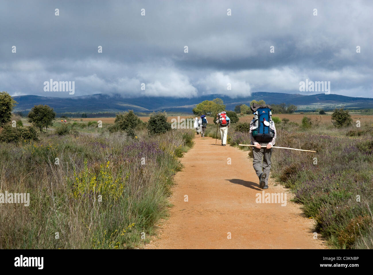 Walkers along the pilgrimage route, Camino de Santiago, Northern Spain - Stock Image