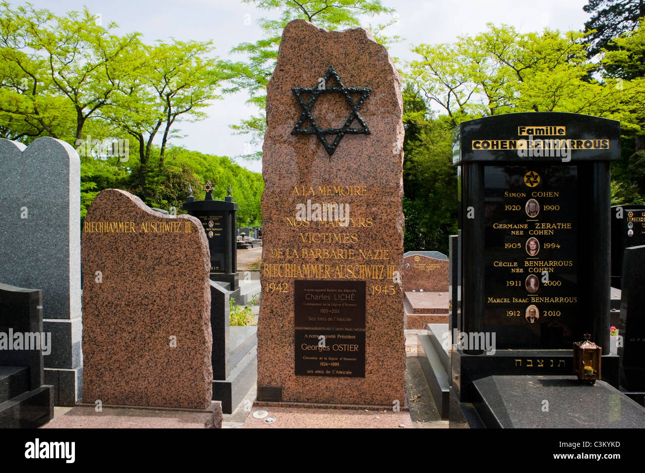 Paris, France, Memorial to Jewish Victims of German Concentration Camps in WWII, Tomb in Bagneaux Cemetery, - Stock Image