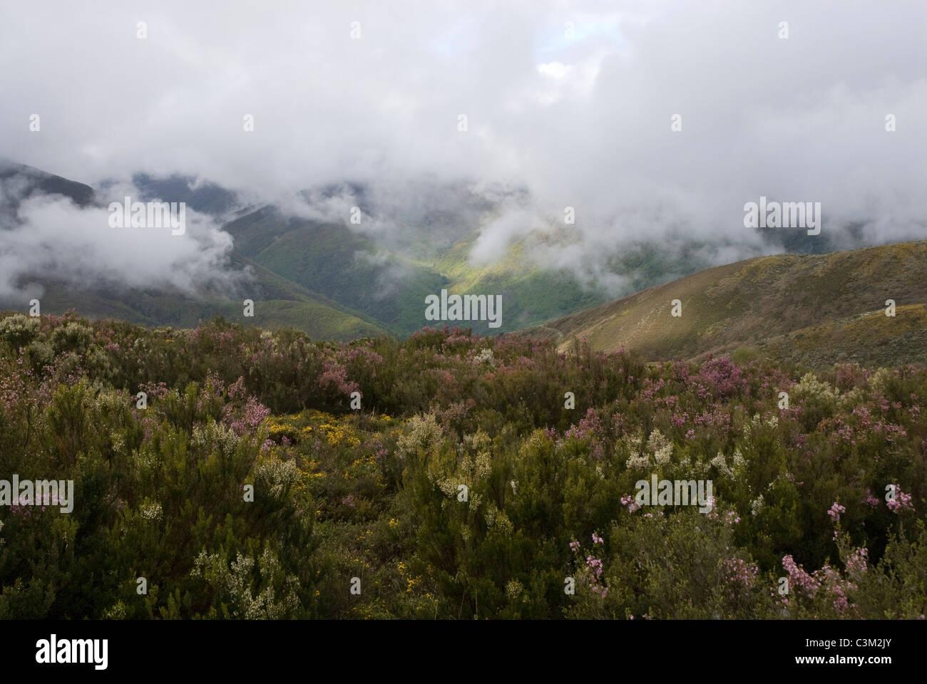 Mountains, Camino de Santiago, Northern Spain - Stock Image