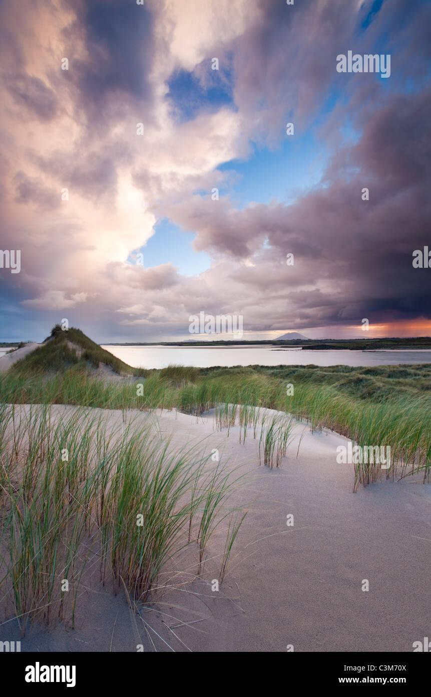 Enniscrone dunes at sunset, County Sligo, Ireland. - Stock Image