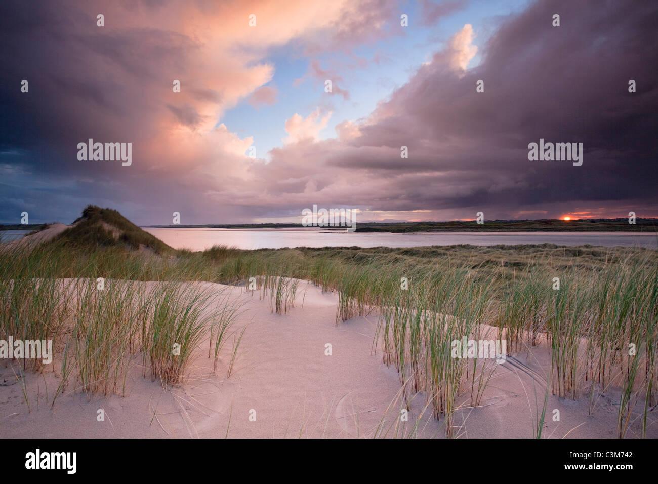 Enniscrone dunes at sunset, Coonty Sligo, Ireland. - Stock Image