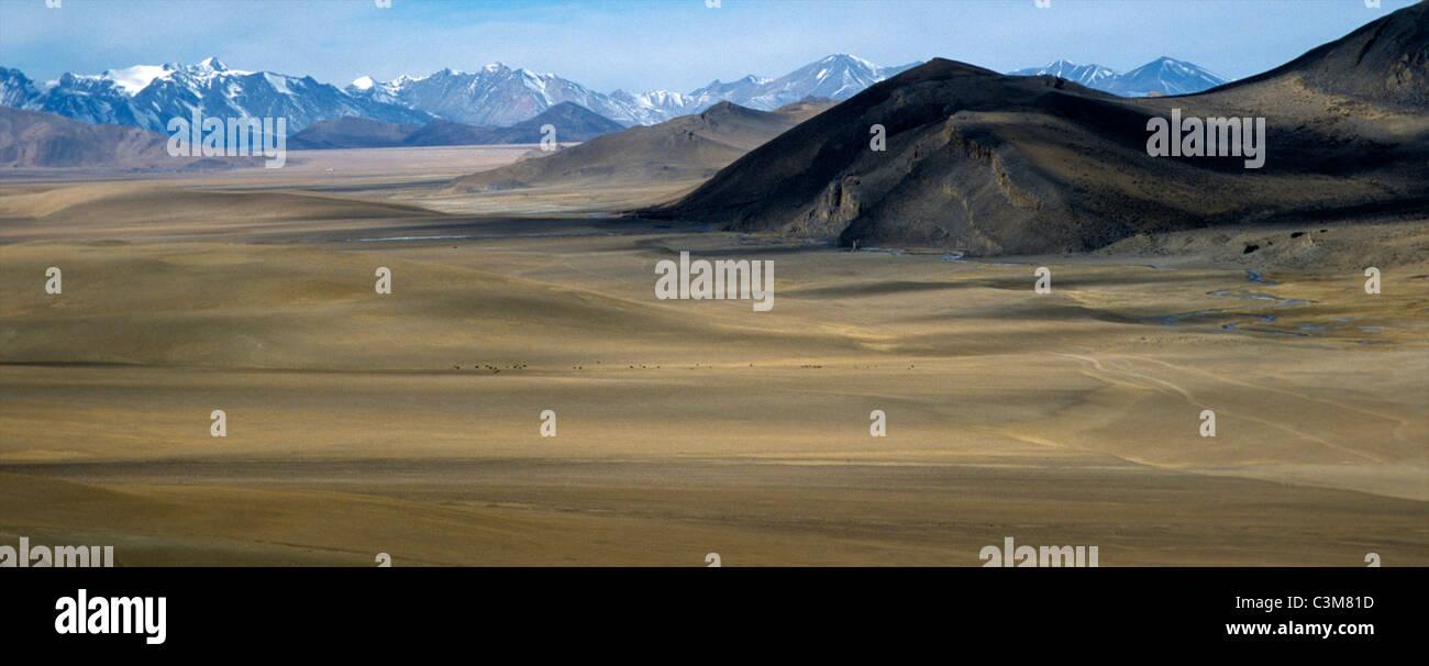 wide savannah in mongolian desert - Stock Image