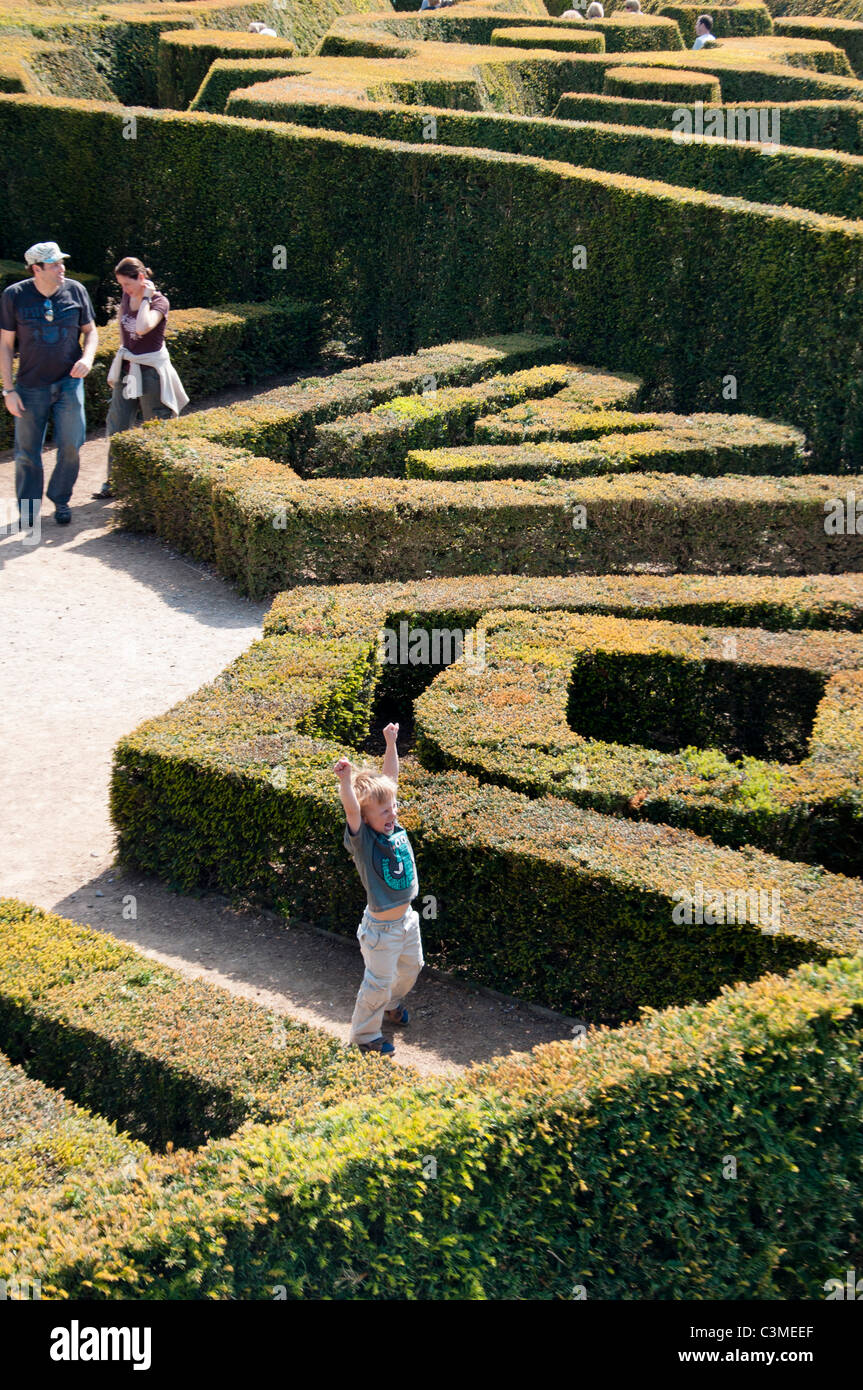 A little boy raises his arms in victory at the Blenheim palace maze, Oxfordshire, England. - Stock Image