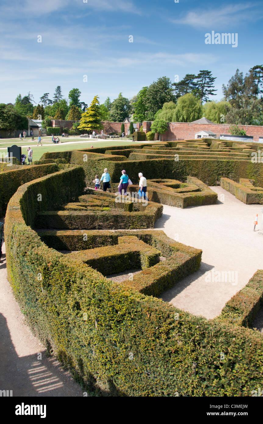 Blenheim palace maze, Oxfordshire, England. - Stock Image