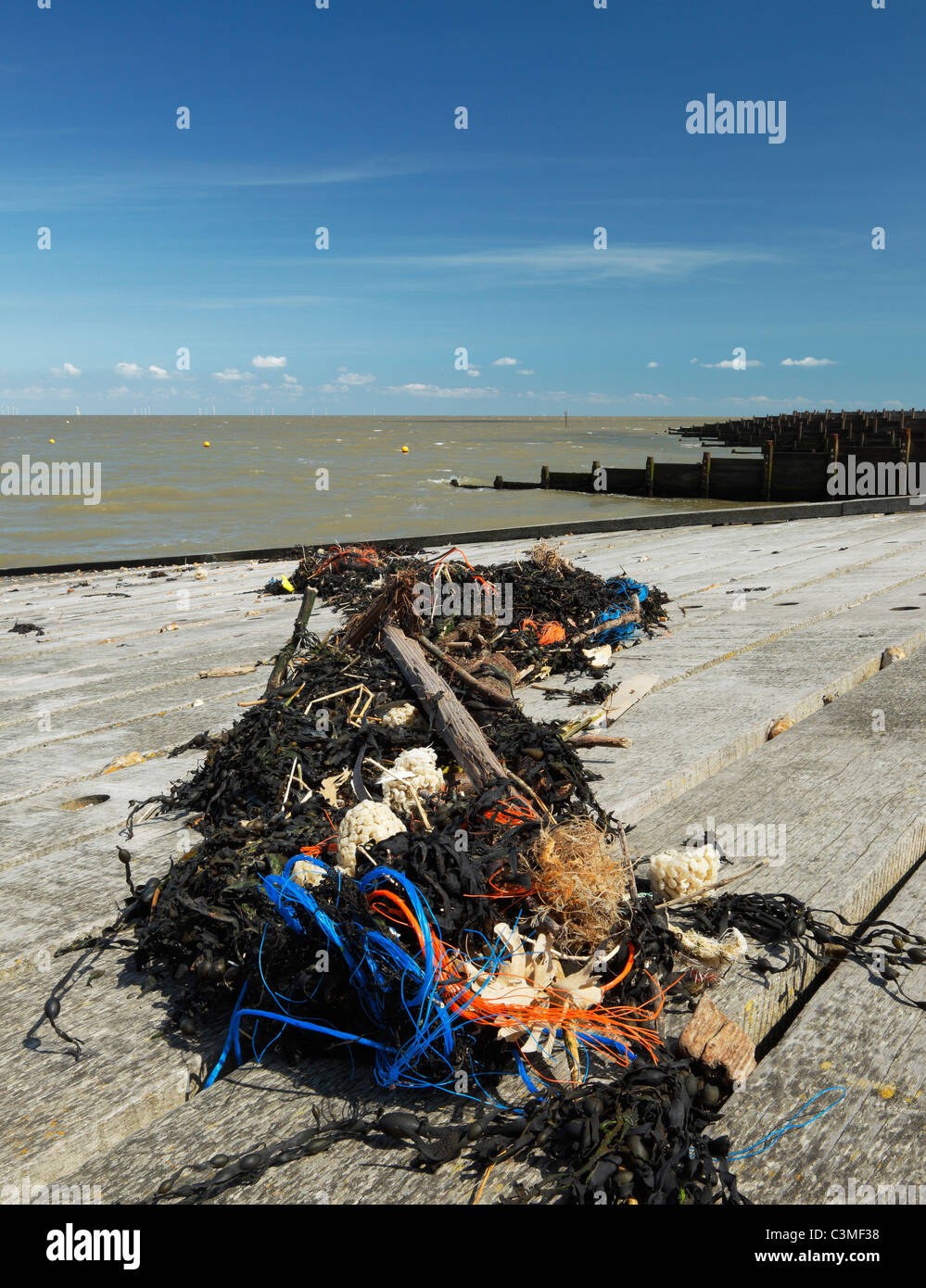 Seaweed and trash deposited at high tide. - Stock Image