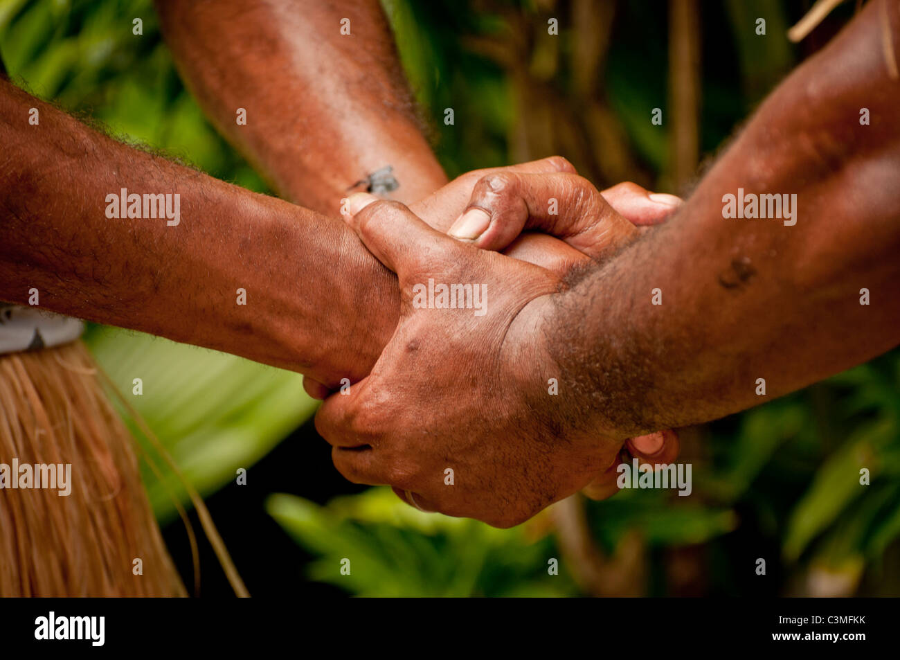 Tradtiional Fijian warriors joining hands during traditional ceremony, Castaways Resort, Quilto Island, Mamanucas, - Stock Image