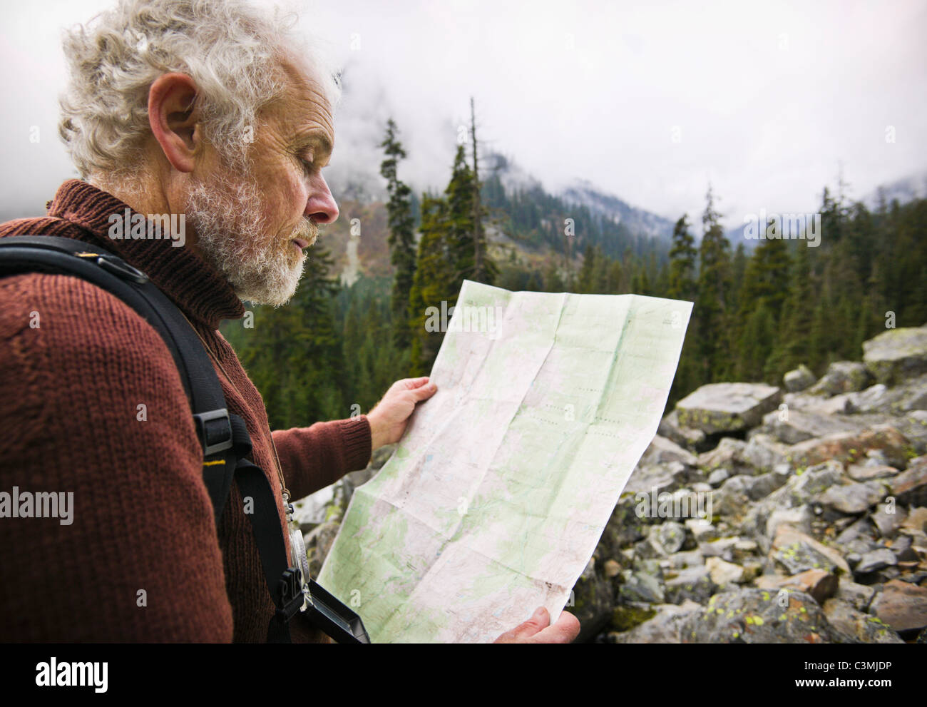 A mature man out in the wilderness using a map to find his way. Washington Cascades, USA. - Stock Image