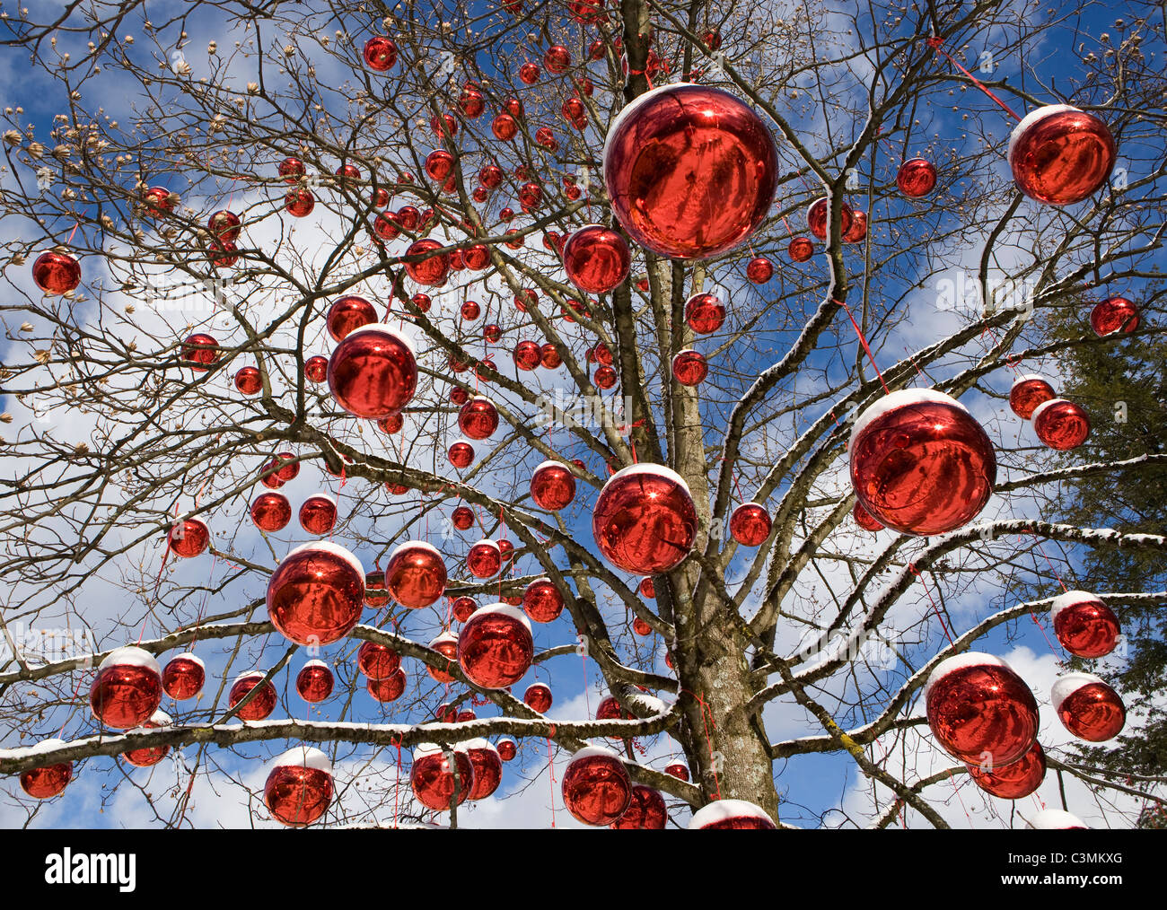 Austria, Salzburg, View of tree decorated with christmas balls - Stock Image