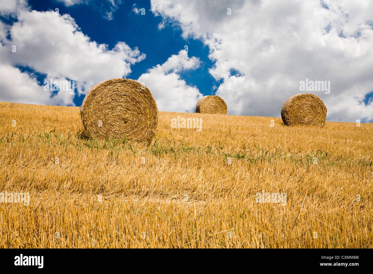 bale on the field and the sky - Stock Image