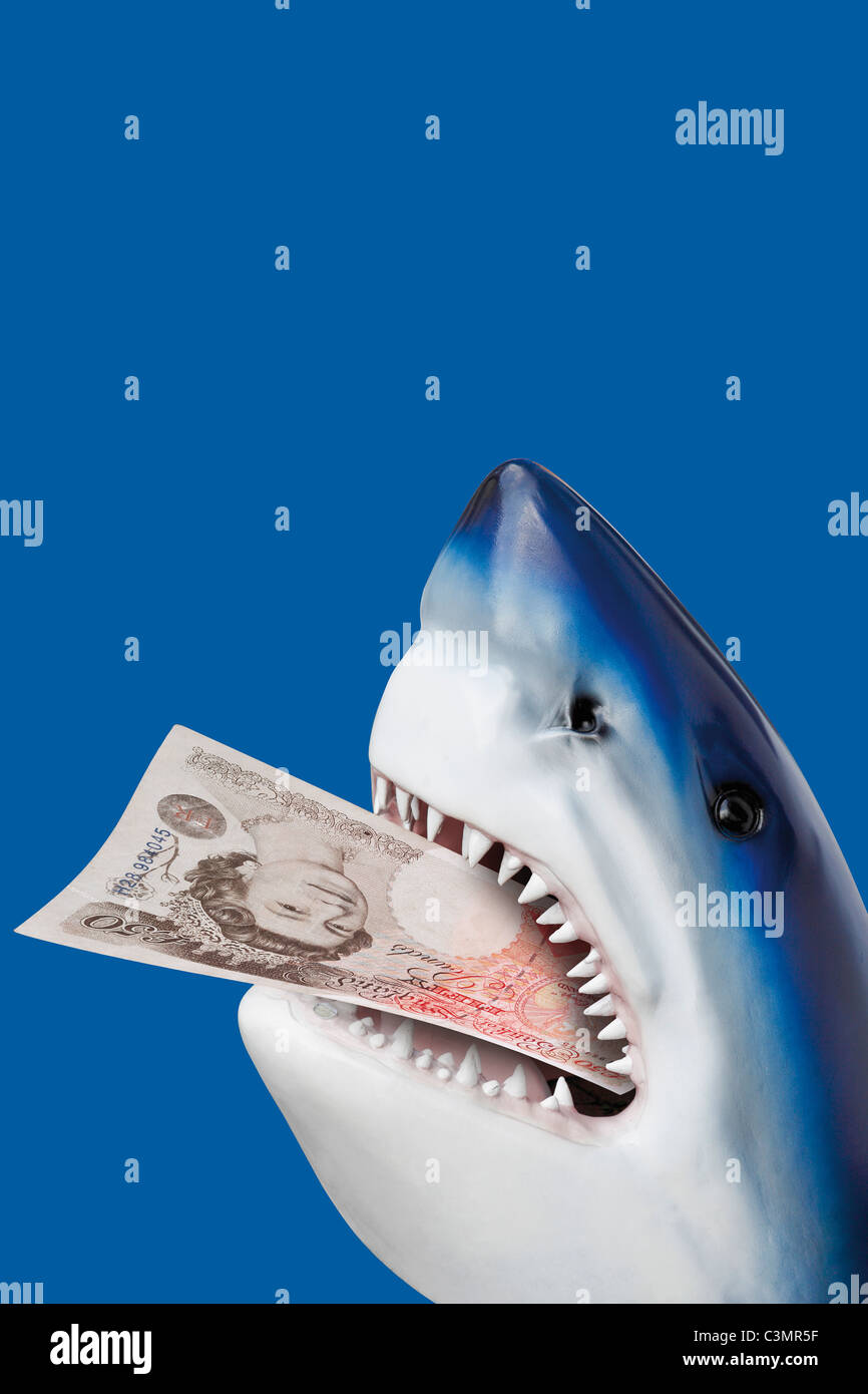 Shark with 50 british pound in mouth. - Stock Image