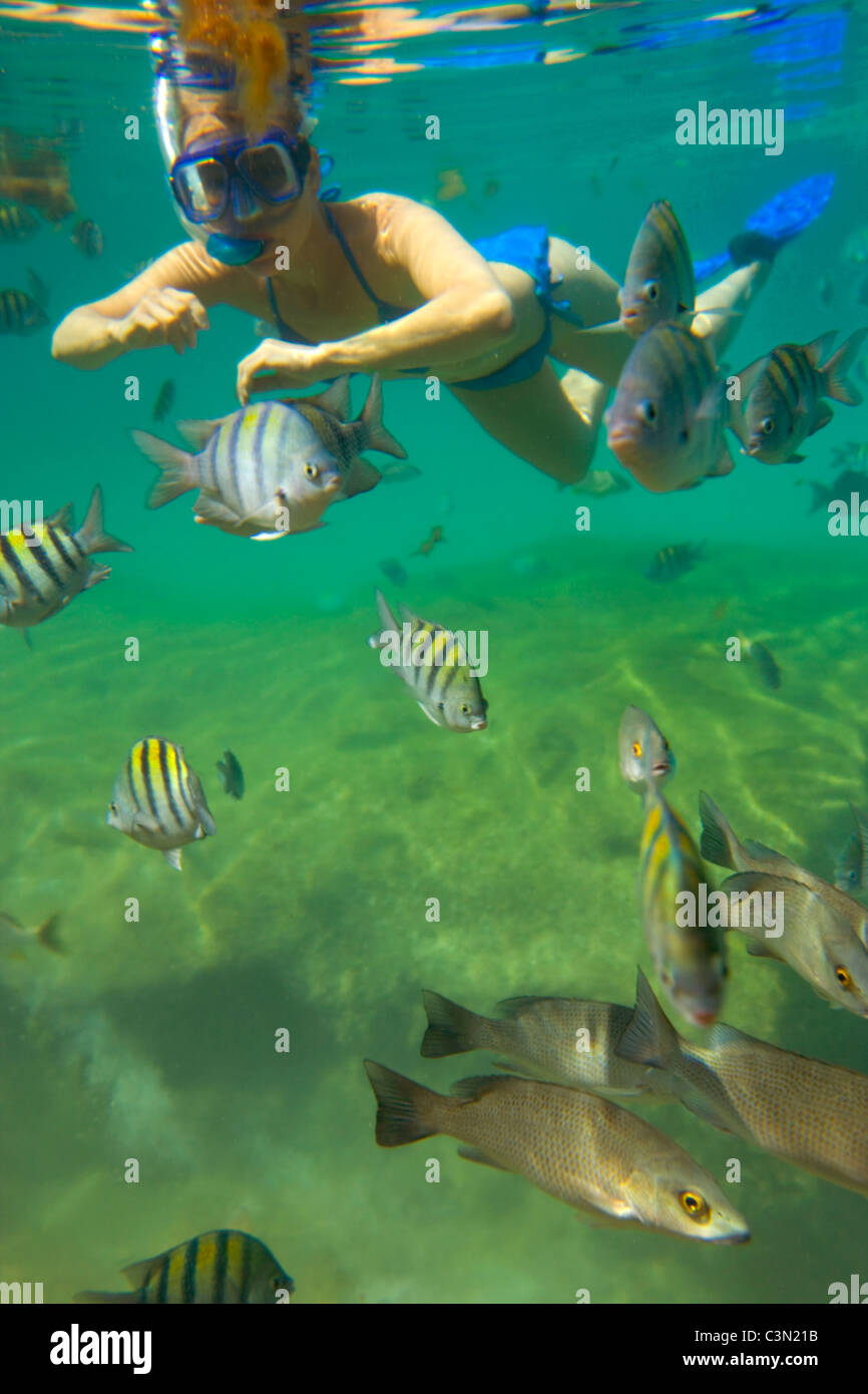 Mexico, Quintana Roo, Xel-Ha nature park. Tourist snorkeling and ...