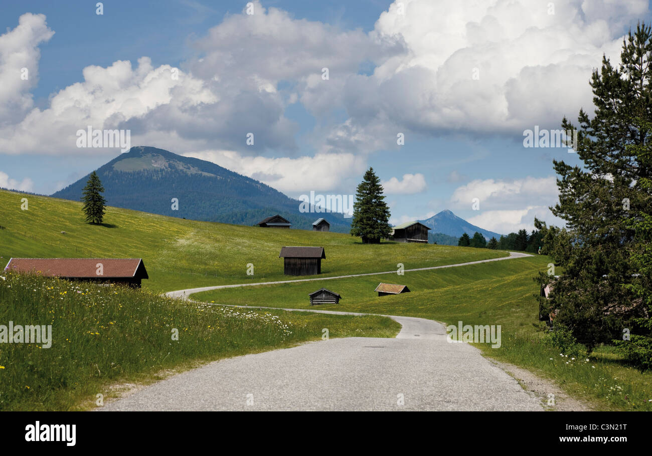 Germany, Bavaria, hump-meadow with karwendel mountains in background - Stock Image