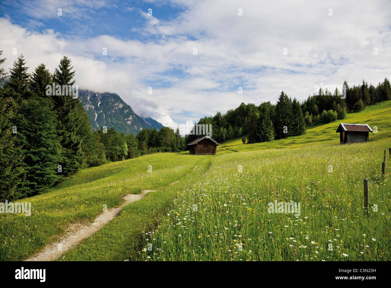 Germany, Bavaria, View of hump-meadow with karwendel mountains in background - Stock Image