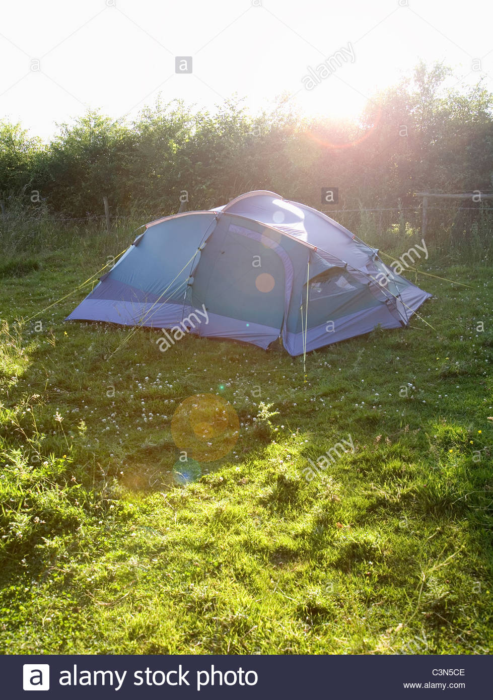 Small tent pitched in field - Stock Image