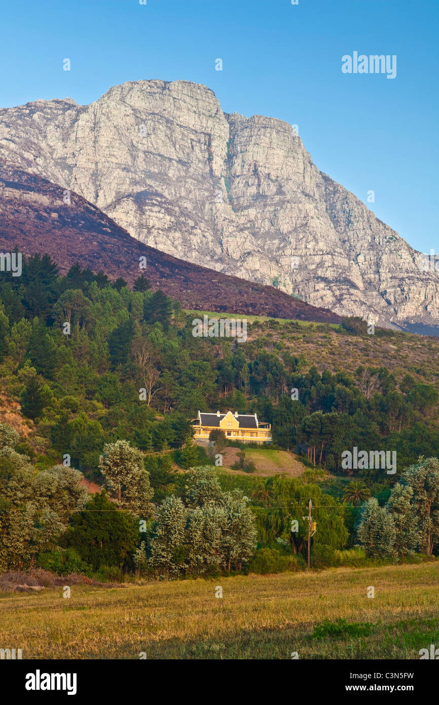 South Africa, Western Cape, near Stellenbosch, Keermont Wine estate and Vineyards. - Stock Image