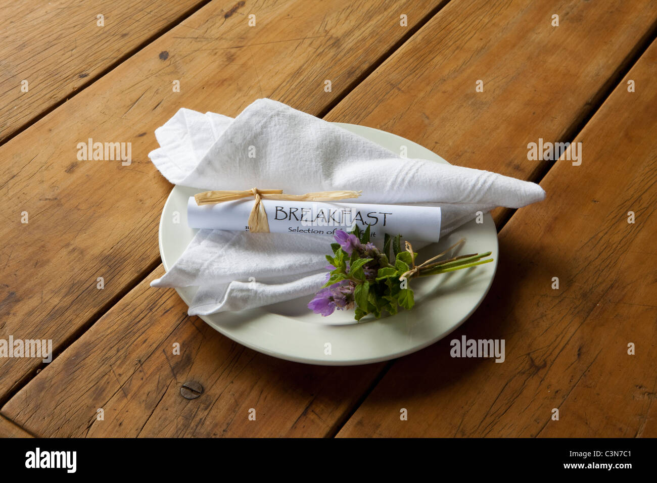 South Africa, Western Cape, Calitzdorp, Red Mountain Nature Reserve. Breakfast plate. Stock Photo