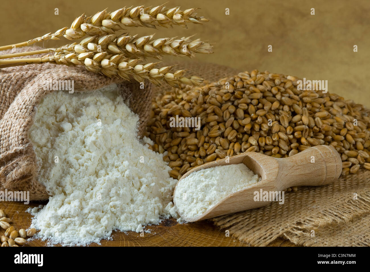 Wheat grain and flour in small burlap bag - Stock Image
