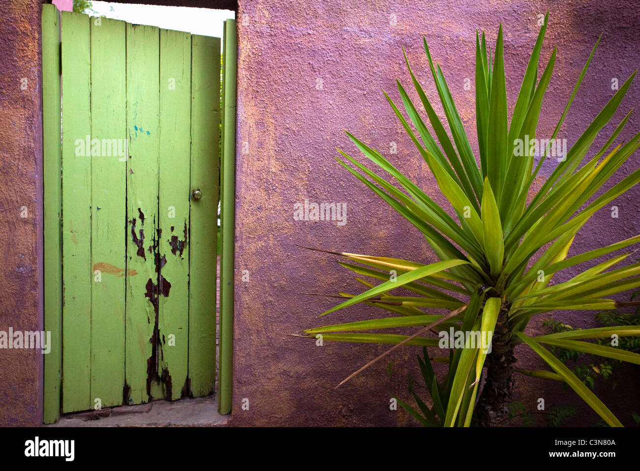 South Africa, Western Cape, Barrydale, garden door. - Stock Image